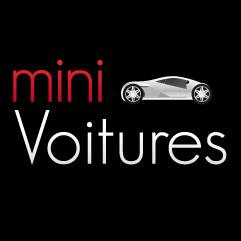 logo_minivoitures